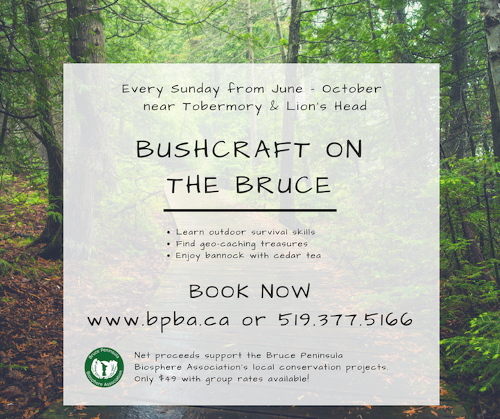 Bushcraft Ad Final