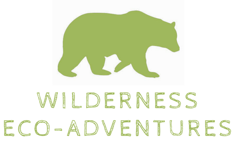 Eco Adventures Logo Bear Small Transparent